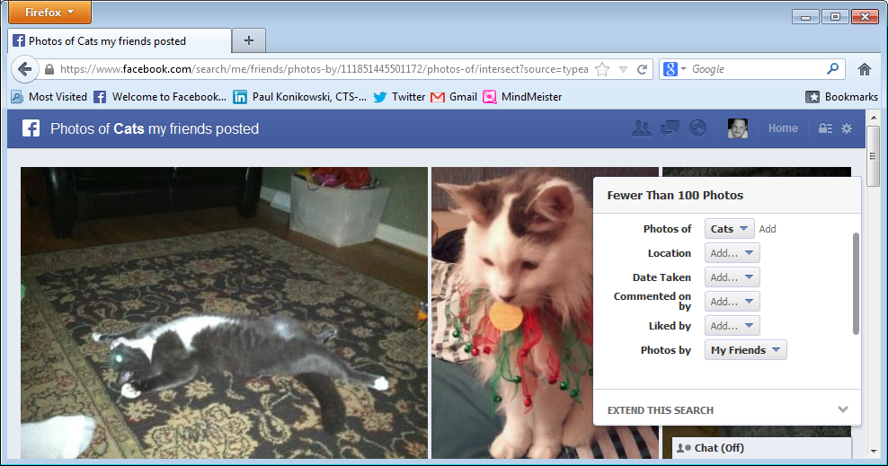 Facebook Graph Search For Cats